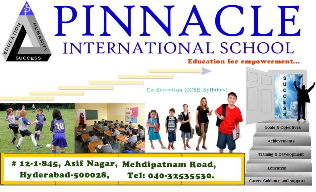 Pinnacle international school